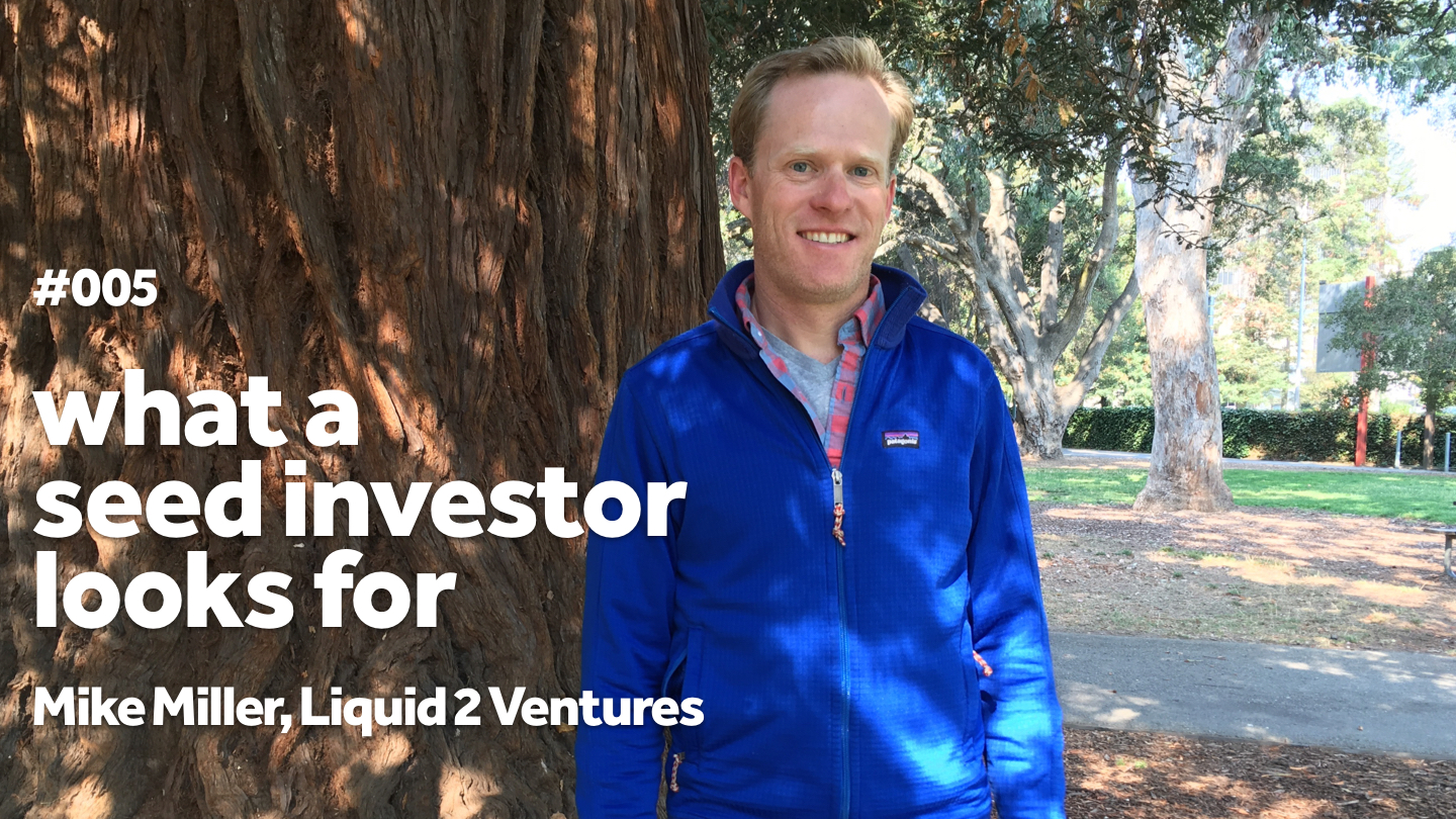 What a Seed Investor Looks For